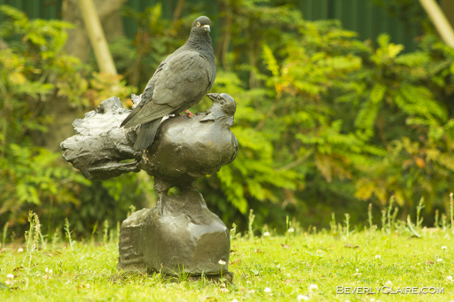 Real pigeon on top of a bronze version. 本物の鳩と鳩彫刻。