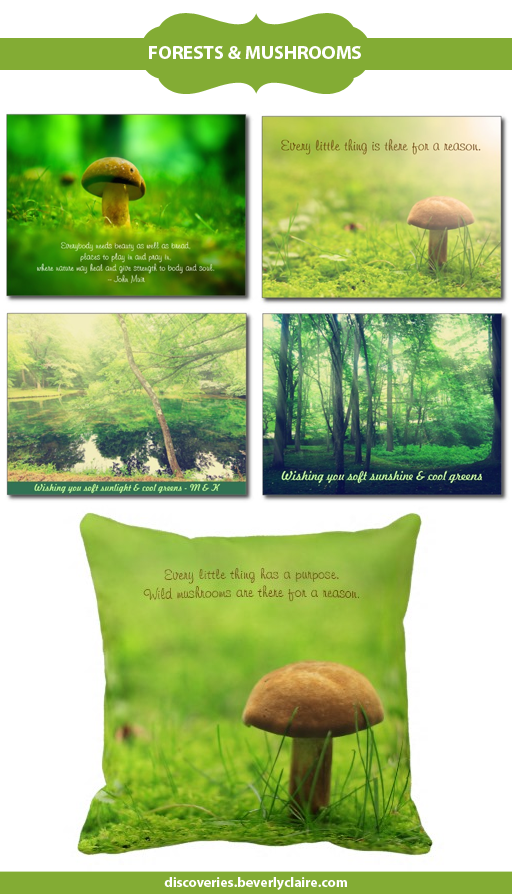 Forests and Lakes postcards | Wild Mushrooms gifts