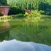 Refreshing Greenery at Usuiko in Gunma