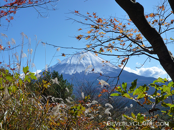 View of Mt. Fuji from the Koyodai Observetion Point. 紅葉台展望台から眺めた富士山。主人が撮影^^